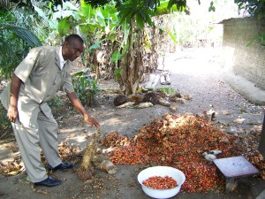 Pastor Yanker explains preparation of the palm kernels prior to boiling and mashing.